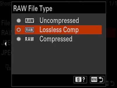 Format RAW compressé sans perte